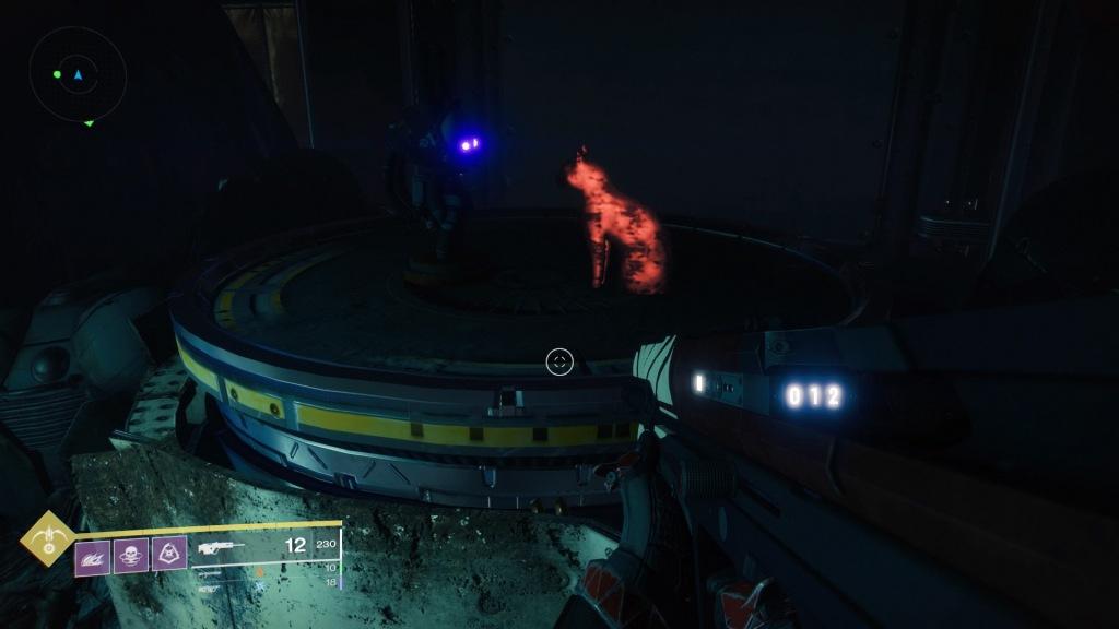 Rabbit vs. Cat - Destiny 2 Shadowkeep