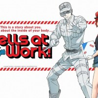 Cells at Work  | After five episodes (Netflix)